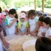 fattoria didattica:il pane